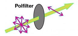 polfilter UV-Schutz